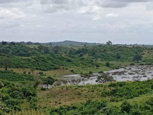 Pioneer Malindi Farm